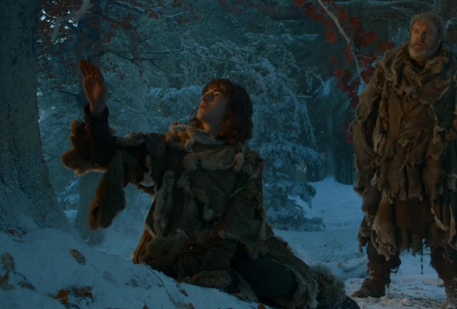 Bran_tree